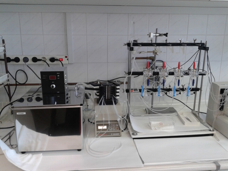 In-vitro superfusion system